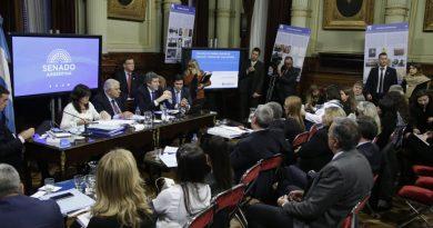 Yarade informó en el Senado de la Nación sobre el proyecto para reducir tarifas de servicios públicos