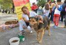 Asociaciones proteccionistas realizan operativo de identificación de mascotas para el Milagro