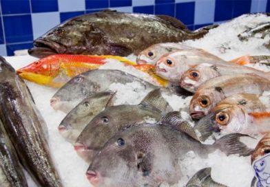 Recomendaciones para compra y manipulación de pescados y mariscos