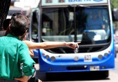 24 líneas de transporte verán afectado su recorrido por obras de reparación de calzada
